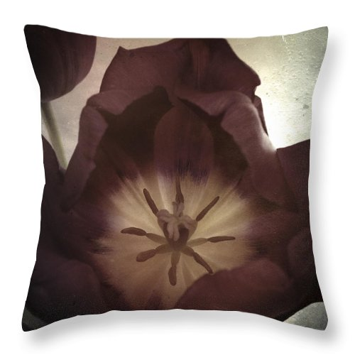Tintype Throw Pillow featuring the photograph Tintype Tulips 59 by Mikael Carstanjen