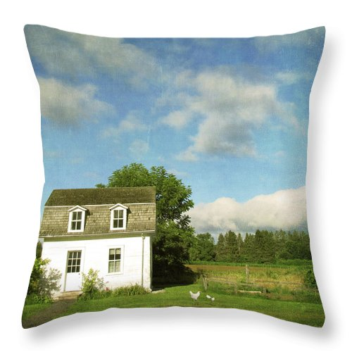 Tranquility Throw Pillow featuring the photograph Tiny Country House by Francois Dion
