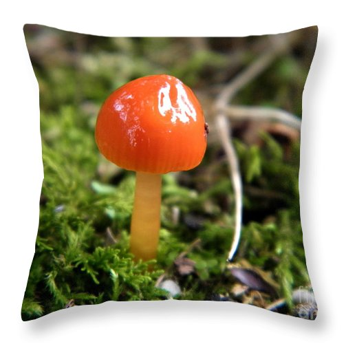 Tiny Throw Pillow featuring the photograph Tiny Orange Mushroom by Sharon Woerner