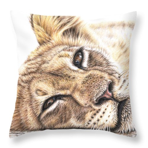 Lion Throw Pillow featuring the drawing Tired Young Lion by Nicole Zeug