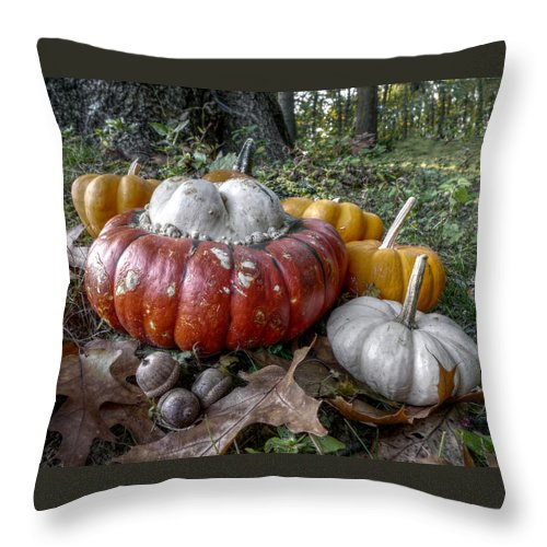 Richard Reeve Throw Pillow featuring the photograph To Swell The Gourd by Richard Reeve