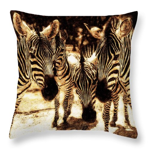 Color Throw Pillow featuring the photograph Together by Yevgeni Kacnelson