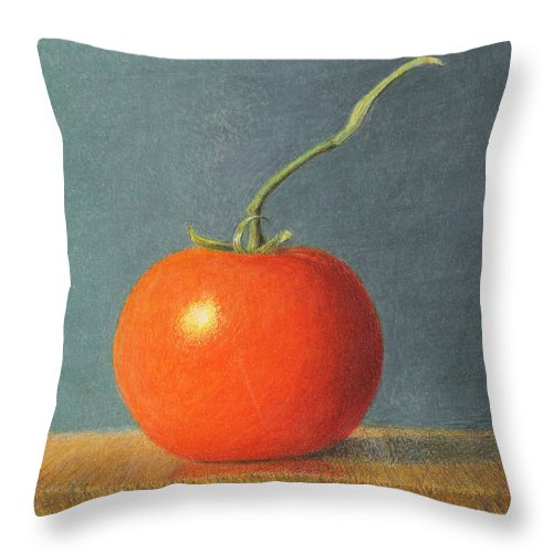 Still Life Throw Pillow featuring the drawing Tomato with Stem by C Sergent Lindsey