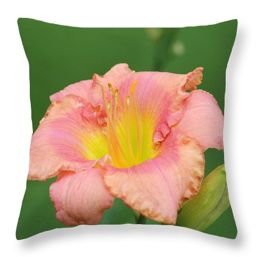 Daylilies Throw Pillow featuring the photograph toni lynn morrison daylily- A by G Berry
