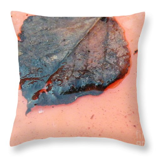 Blackened Throw Pillow featuring the photograph Too Late For Hydration by Brian Boyle