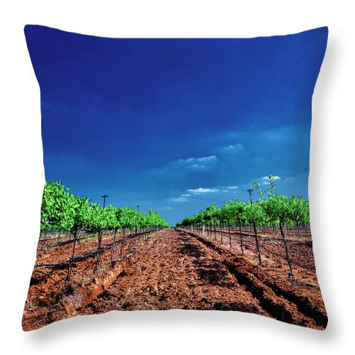 Tranquility Throw Pillow featuring the photograph Torre Di Pietra Winery by Dean Fikar