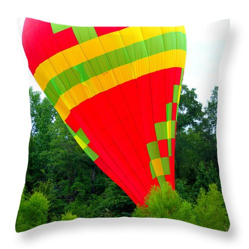 Touchdown Throw Pillow featuring the photograph Touchdown by Darrell Clakley