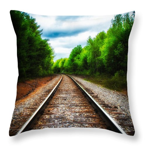 Landscape Throw Pillow featuring the photograph Tracks Through The Woods by Bob Orsillo