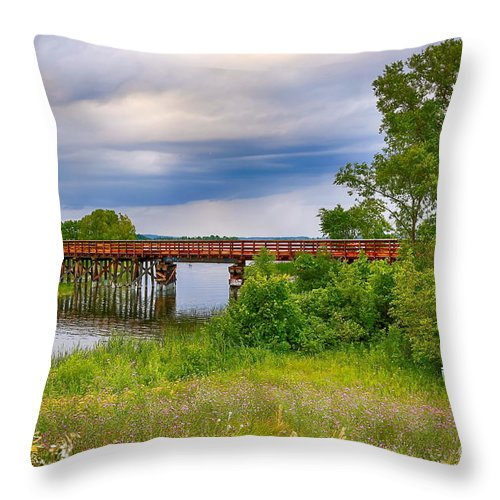 Lake Throw Pillow featuring the photograph Trail Bridge by Bryan Benson