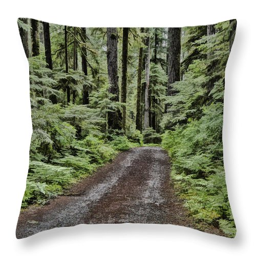 Trees Throw Pillow featuring the photograph Trail To Jaw Bone Flats by Erika Fawcett
