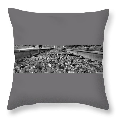 Train Throw Pillow featuring the photograph Train Tracks by Dan Sproul