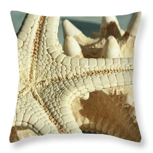 Tranquility Of The Ocean Throw Pillow featuring the photograph Tranquility Of The Ocean by Inspired Nature Photography Fine Art Photography