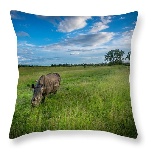 Africa Throw Pillow featuring the photograph Tranquility On The Plains by Andrew Matwijec