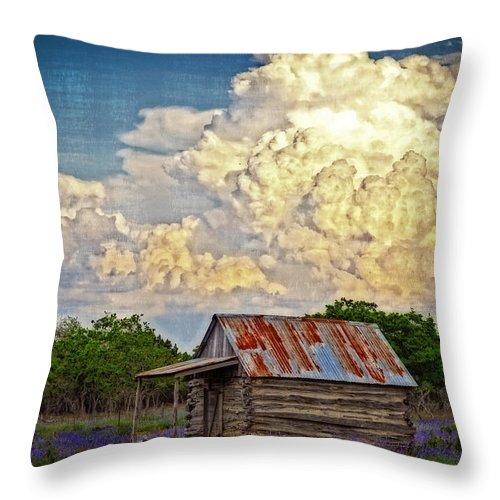 Landscape Throw Pillow featuring the photograph Treacherous Beauty by Lynn Bauer