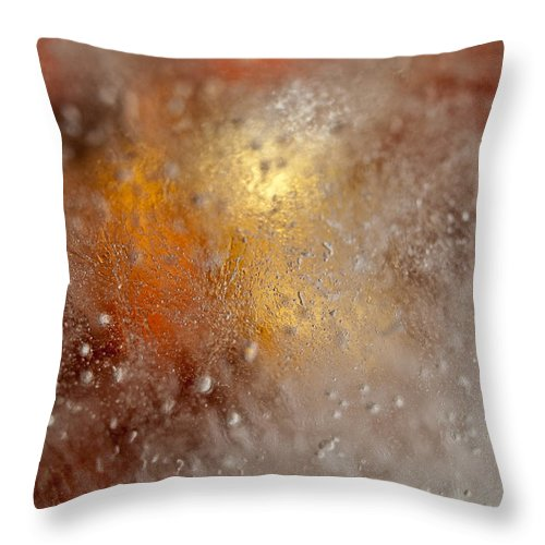 Abstract Throw Pillow featuring the photograph Treasure Within by Shannon Workman