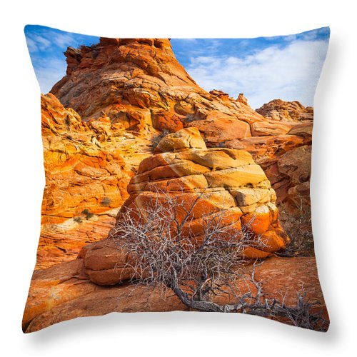 America Throw Pillow featuring the photograph Tree And Hoodoo by Inge Johnsson