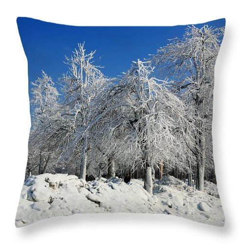 Niagara Falls Throw Pillow featuring the photograph Tree Ice by Eric Swan