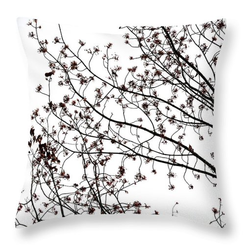 Tree Throw Pillow featuring the photograph Tree Impression #4 by Catherine Lau