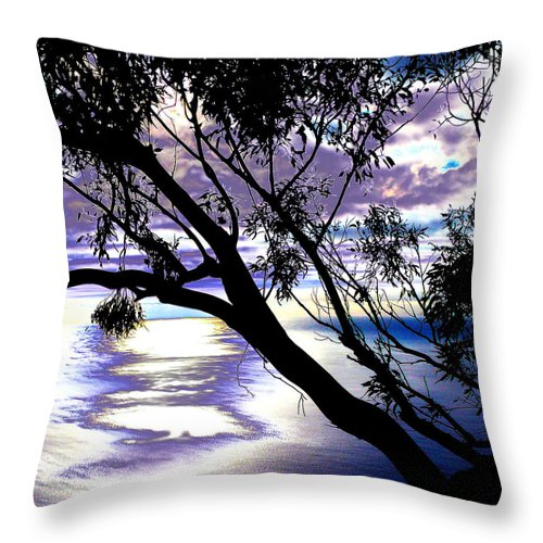 Funchal Throw Pillow featuring the photograph Tree In Silhouette by Tracy Winter