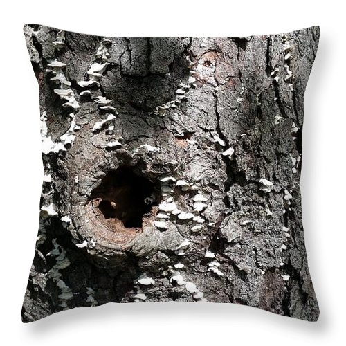 Landscape Throw Pillow featuring the photograph Tree Lichen Hole by Mark Victors