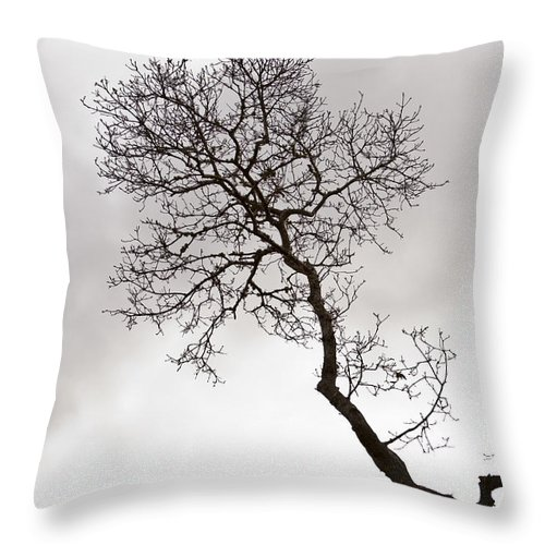 Tree Throw Pillow featuring the photograph Tree Limb by Dennis Coates