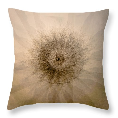 Photographic Mandala Throw Pillow featuring the photograph Tree Mandala 1 by Corinna Stoeffl