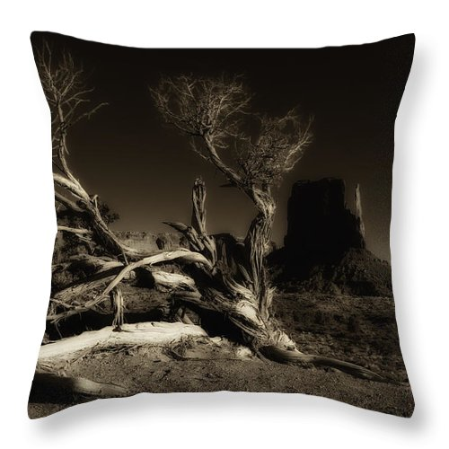 Southwest Throw Pillow featuring the photograph Tree Monument Valley by Ron White