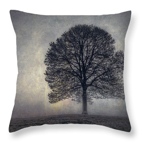 Tree Throw Pillow featuring the photograph Tree of Life by Scott Norris