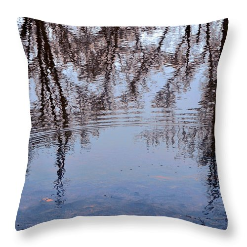 Nature Throw Pillow featuring the photograph Tree Reflections I by Debbie Portwood