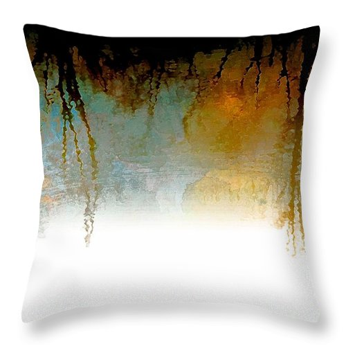 Nature Throw Pillow featuring the photograph Tree Reflections IIi by Debbie Portwood