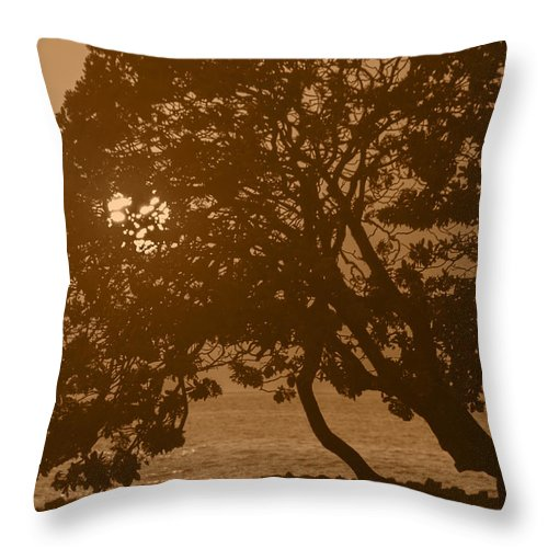 Tree Silhouettes Throw Pillow featuring the photograph Tree Silhouettes by Alina Oswald