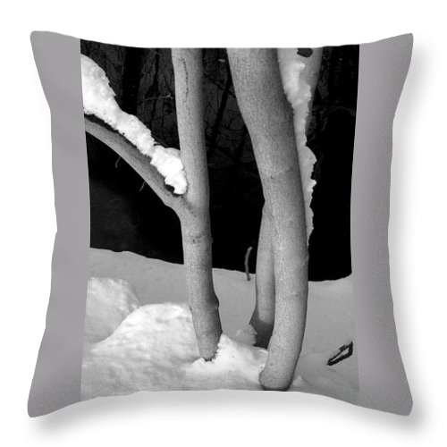 Throw Pillow featuring the photograph Tree With Snow by David Pantuso