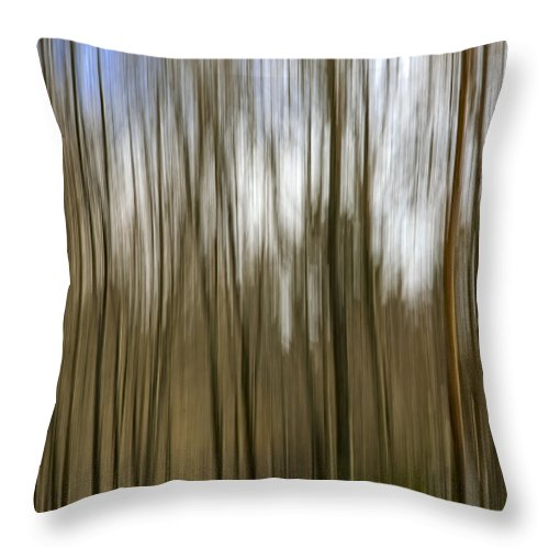 Trees Throw Pillow featuring the photograph Trees #2 by David Stone