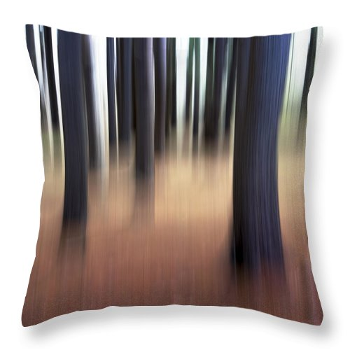 Crane Estate Throw Pillow featuring the photograph Trees #3 by David Stone