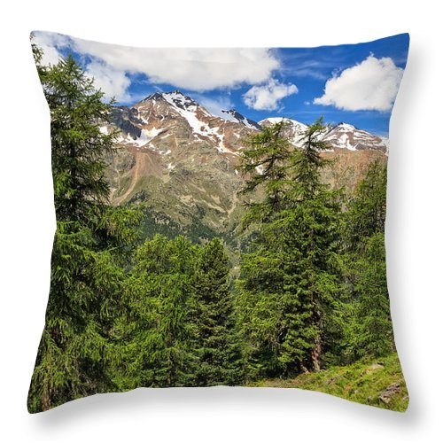 Alpine Throw Pillow featuring the photograph Trentino - Pejo Valley On Summer by Antonio Scarpi
