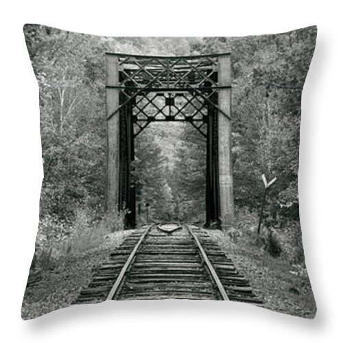 Photography Throw Pillow featuring the photograph Trestle Bridge Over Railroad Track by Panoramic Images