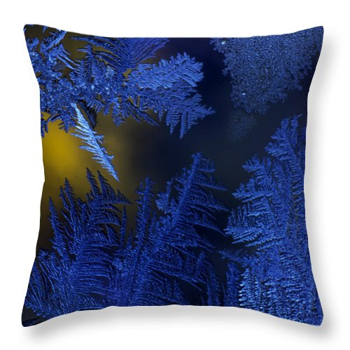 Detail Throw Pillow featuring the photograph Trice by Nathan Seavey