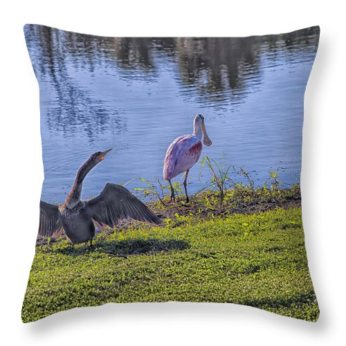 Cormorant Throw Pillow featuring the photograph Trio by Louise Hill