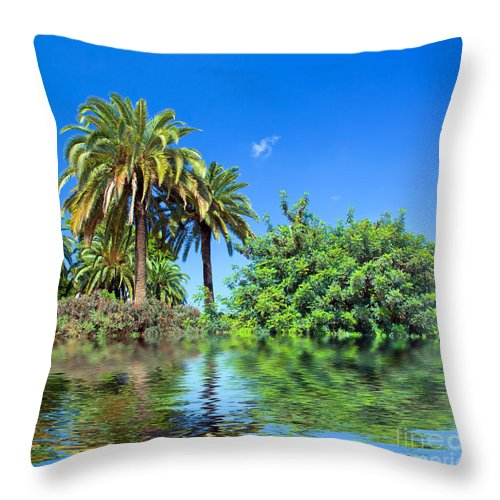 Jungle Throw Pillow featuring the photograph Tropical Exotic Jungle And Water by Michal Bednarek