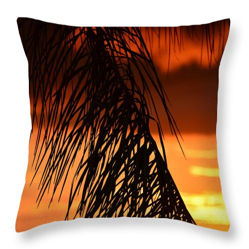 Tropical Sunset Throw Pillow featuring the photograph Tropical Sunset by David Lee Thompson