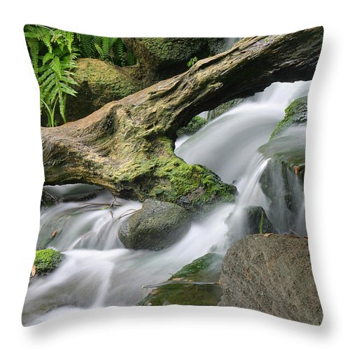 Tropical Waterfall Throw Pillow featuring the photograph Tropical Waterfall by Doug Dailey