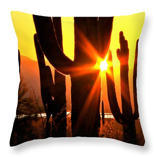 Arizona Throw Pillow featuring the photograph Tucson Sunset by Ed Riche