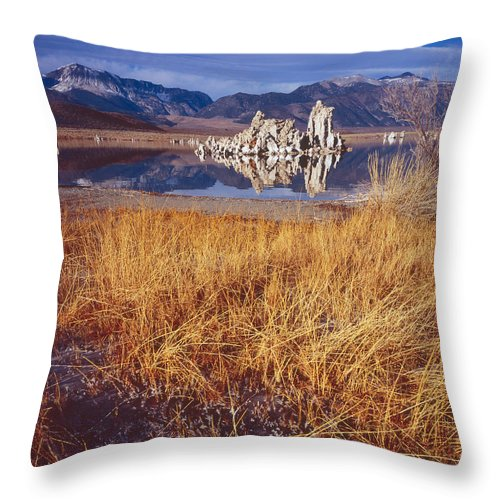 Nature Photography Throw Pillow featuring the photograph Tufa And Frozen Grass-h by Tom Daniel