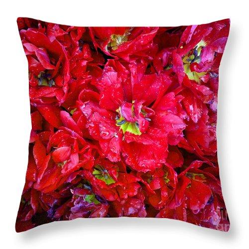 Hanza Turgul Throw Pillow featuring the photograph Tulip Festival - 21 by Hanza Turgul