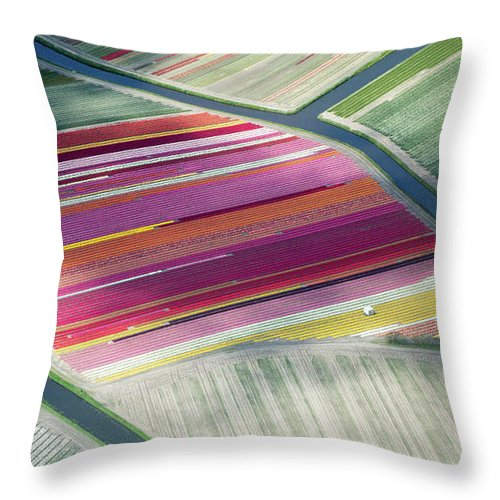 Curve Throw Pillow featuring the photograph Tulip Fields, Aerial View, South by Frans Sellies