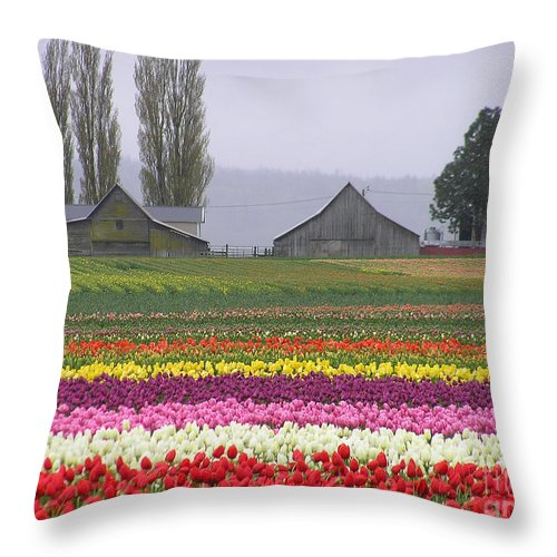 Tulips Throw Pillow featuring the photograph Tulip Town Barns by Louise Magno