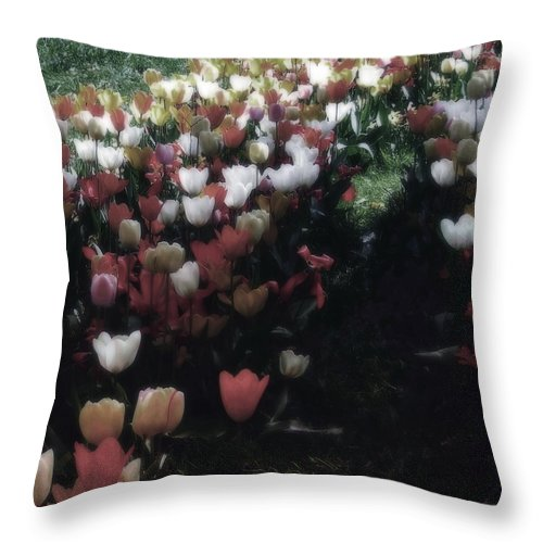Tulipan Throw Pillow featuring the photograph Tulipans by Ramon Martinez