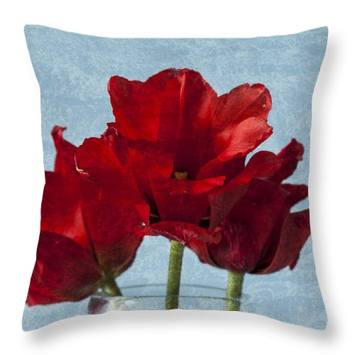 Red Tulips Throw Pillow featuring the photograph Tulips 1 by Steve Purnell