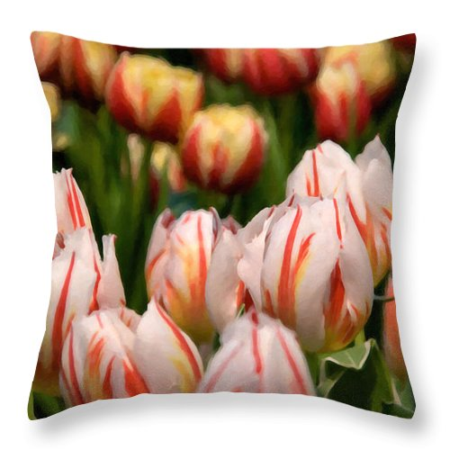 Beauty In Nature Throw Pillow featuring the photograph Tulips 31 by Ingrid Smith-Johnsen