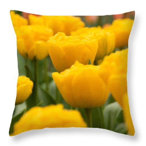 Beauty In Nature Throw Pillow featuring the photograph Tulips 29 by Ingrid Smith-Johnsen